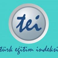 Türk Eğitim İndeksi
