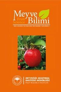 Meyve Bilimi