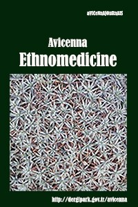Avicenna Ethnomedicine